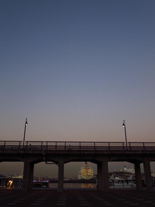 zonohana_02a.jpg